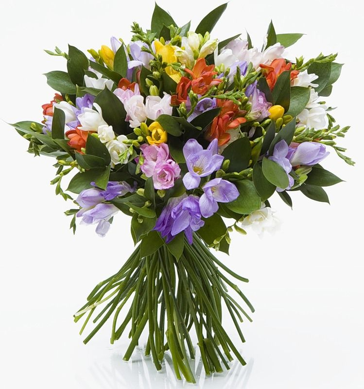 Sevdaseli Dostlarına Bir Buket çiçek Buket çiçekler Rüya Gibi
