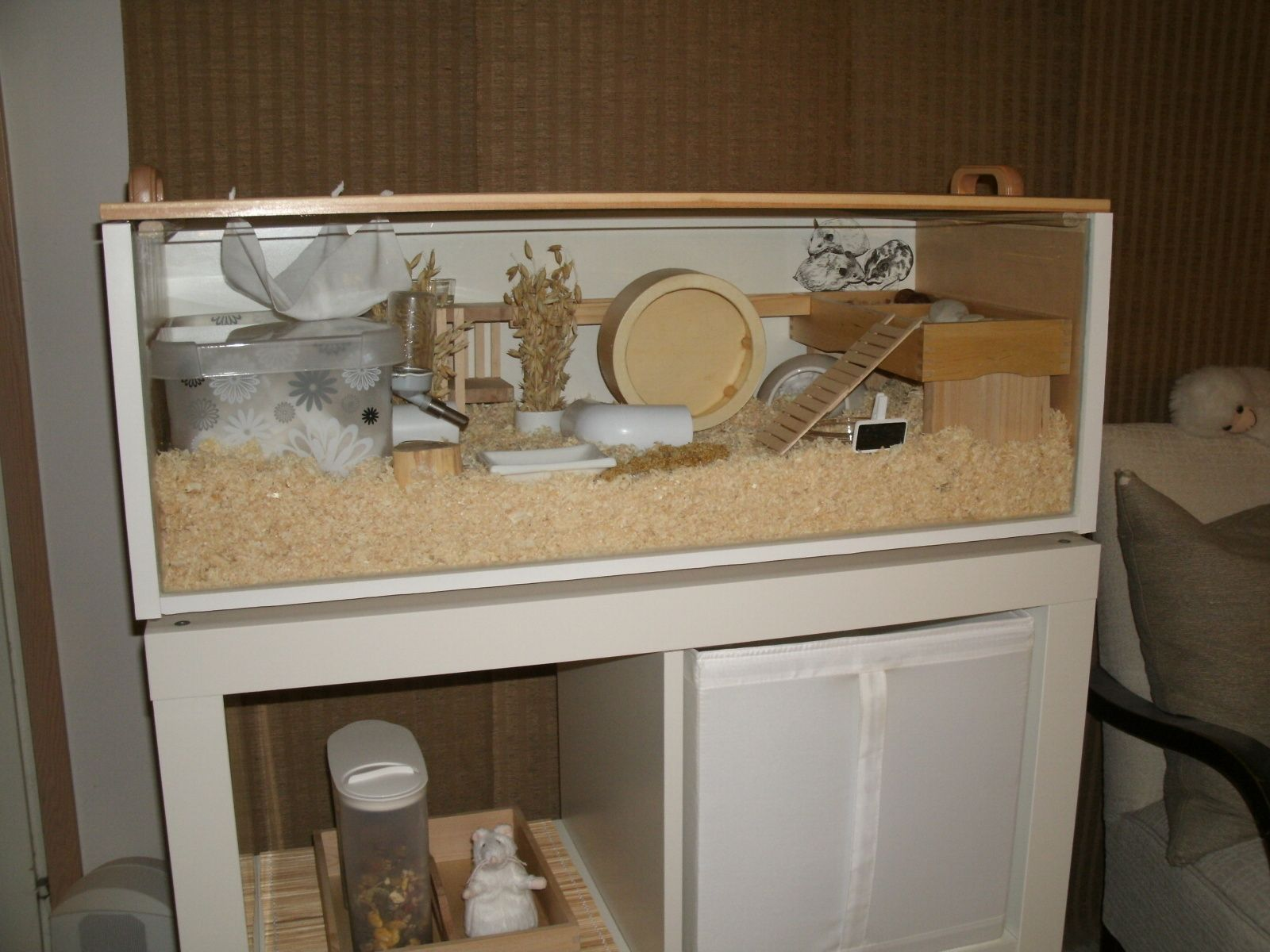 Hamster cage made from an ikea billy bookcase exactly for Ikea hamster cage