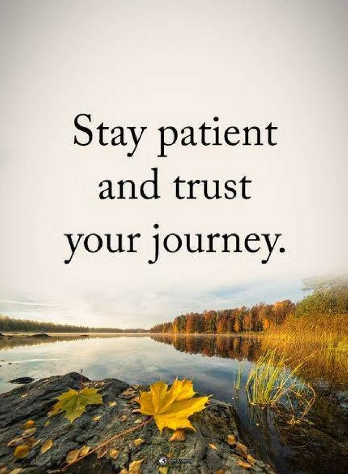 Quotes Stay Patient And Trust Your Journey Quotes Pinterest