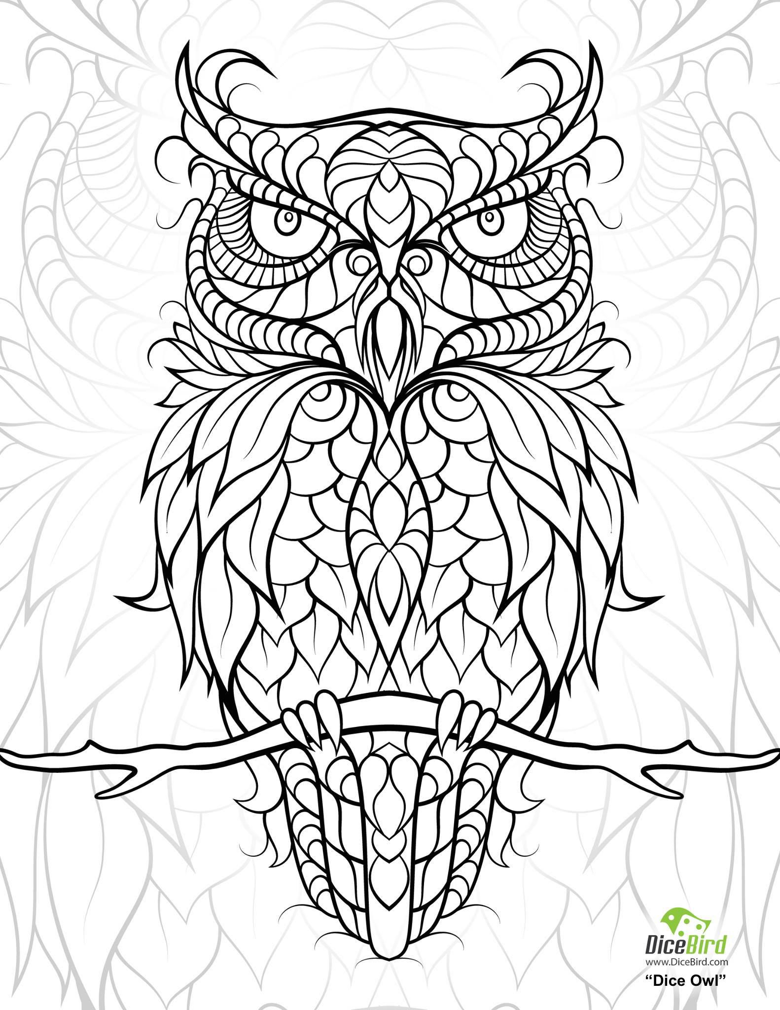 diceowlfree printable adult coloring pages Owl coloring