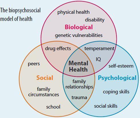The Biopsychosocial Model Social Work Interventions Social Work Social Work Theories