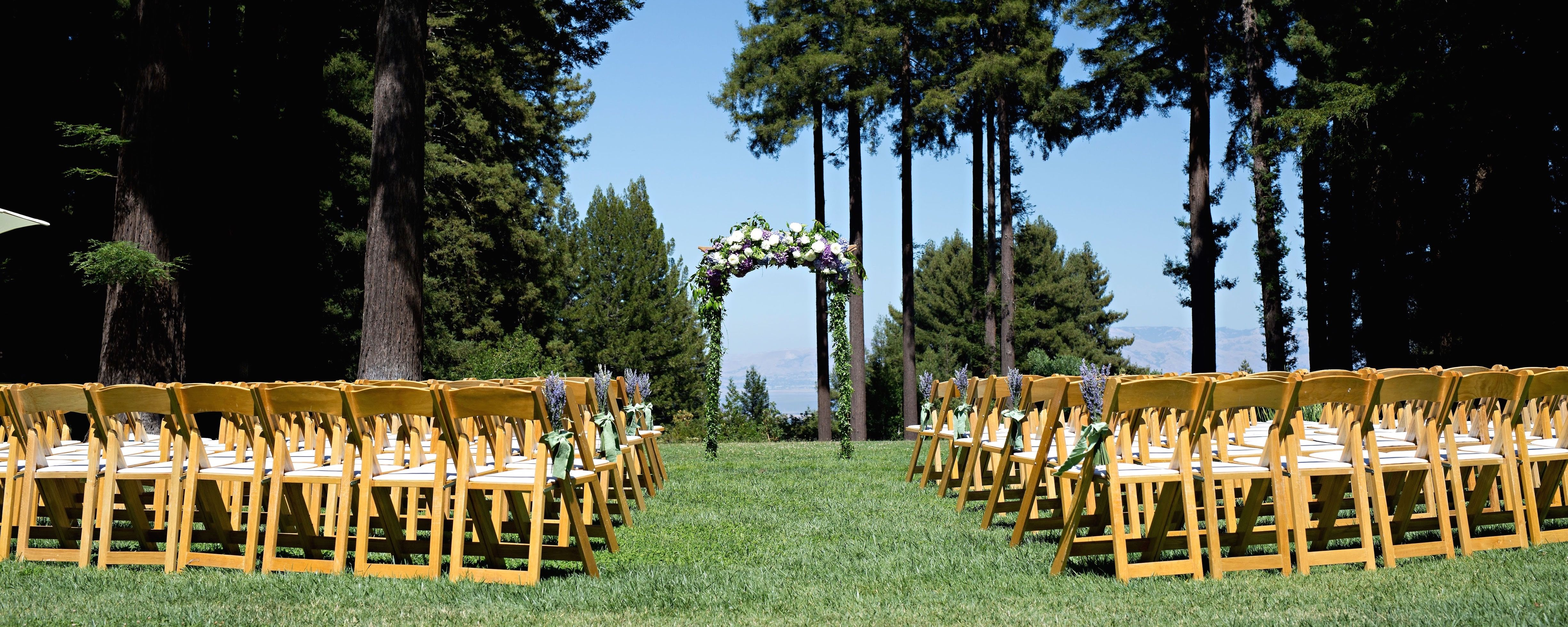 Wedding arch at The Mountain Terrace (With images) Party