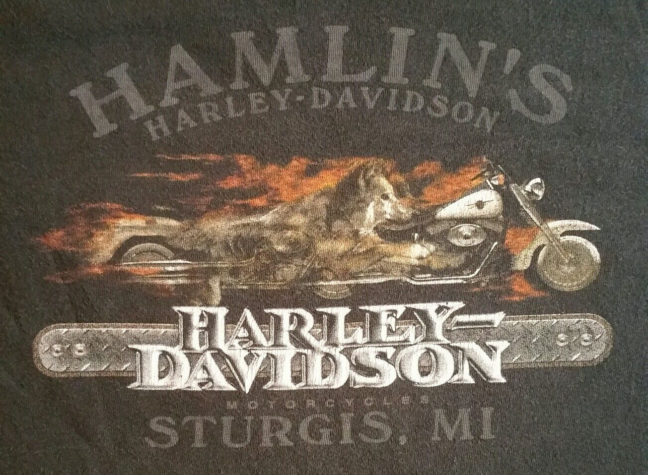 Pin By Robert Davis On T Shirts From Hd Dealers I Have Ridden To Harley Davidson Pictures Harley Davidson Harley D