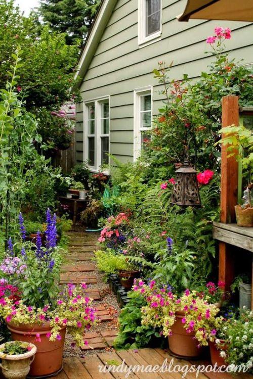 Lovely Cottage side garden