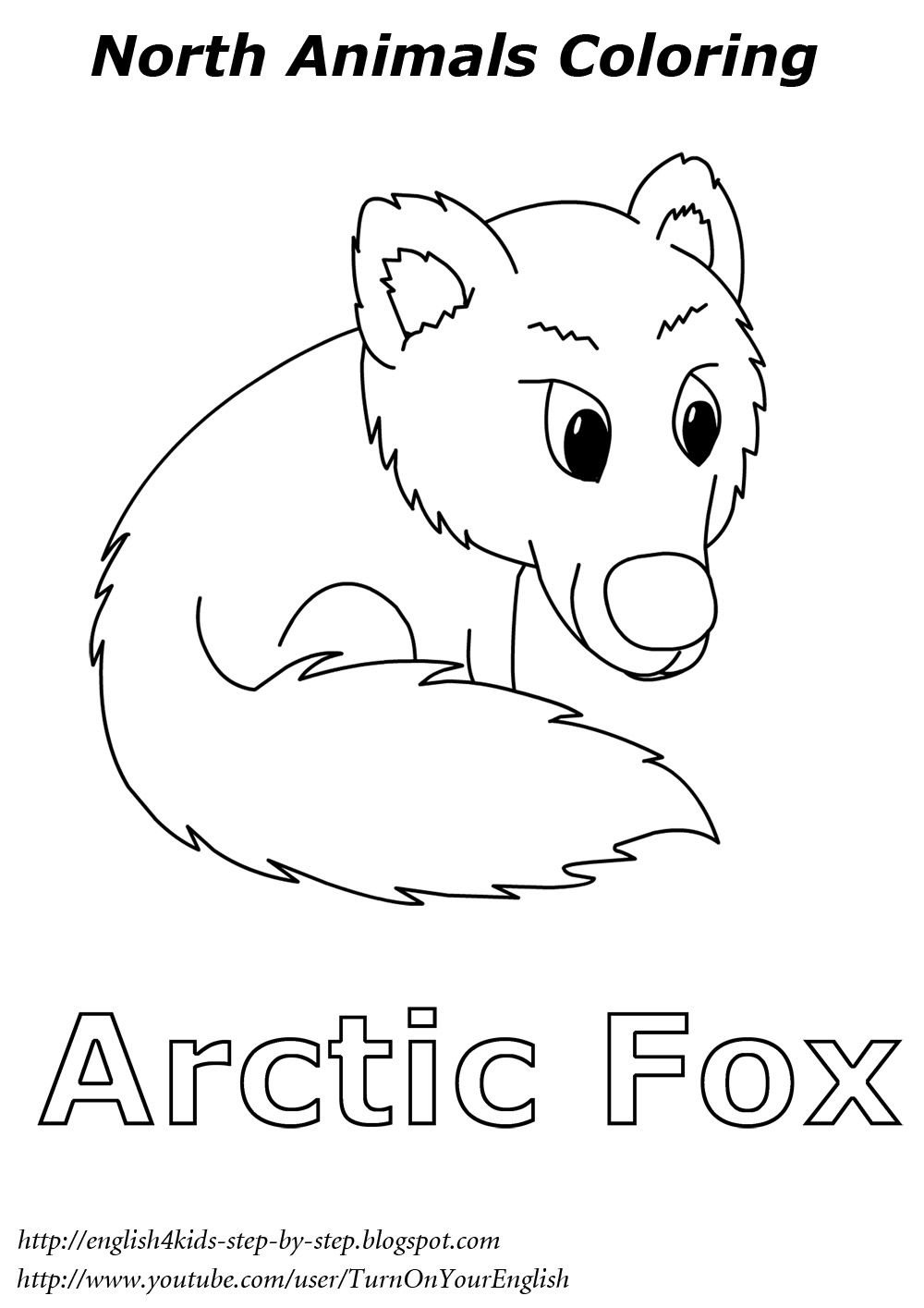 arctic fox coloring for kids esl English Learning