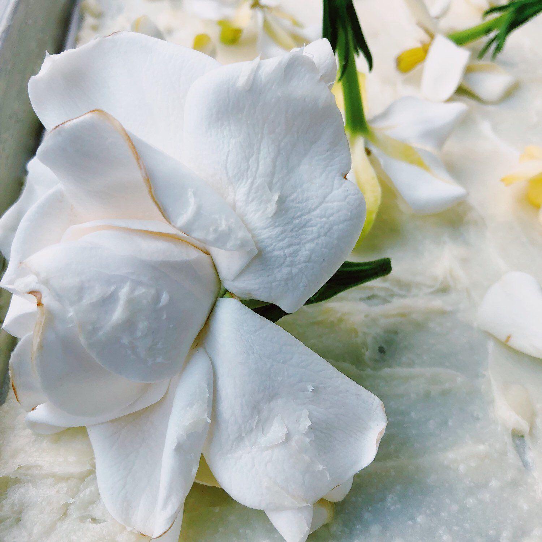 Gardenia Jasminoides Enfleurage Vegan Organic Botanical Solid