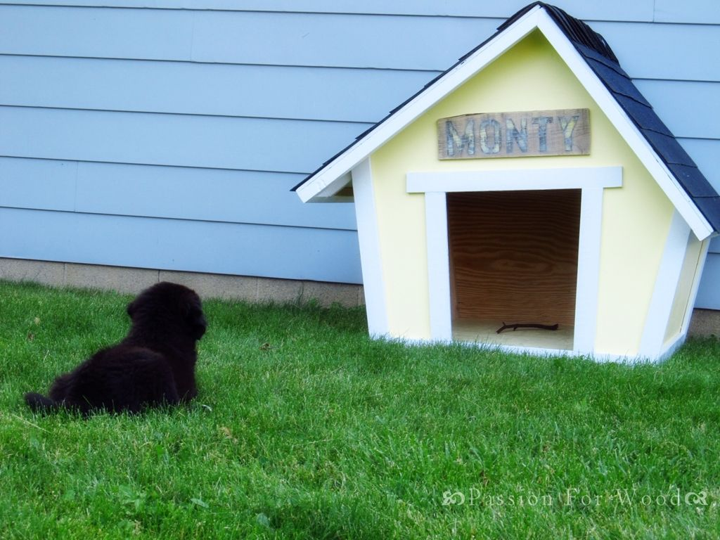 Crooked Doghouse Dog Houses Build A Dog House Ana White