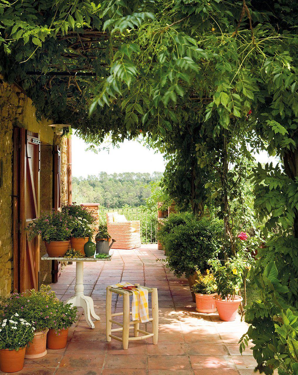 Un exterior para disfrutarlo todo el a o for Plantas aromaticas exterior todo el ano