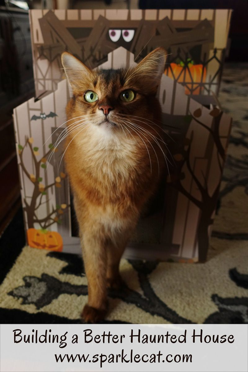 Building A Better Haunted House Haunted House Cat Scratchers Cat House