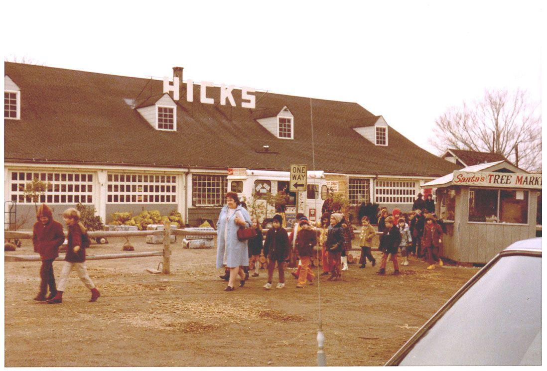 storefront in 1972. hicks nurseries