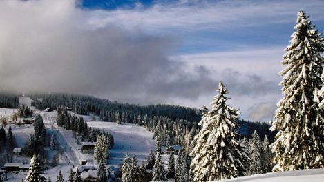 Planet Schwarzwald black forest schwarzwald karlsruhe and basel oktoberfest and