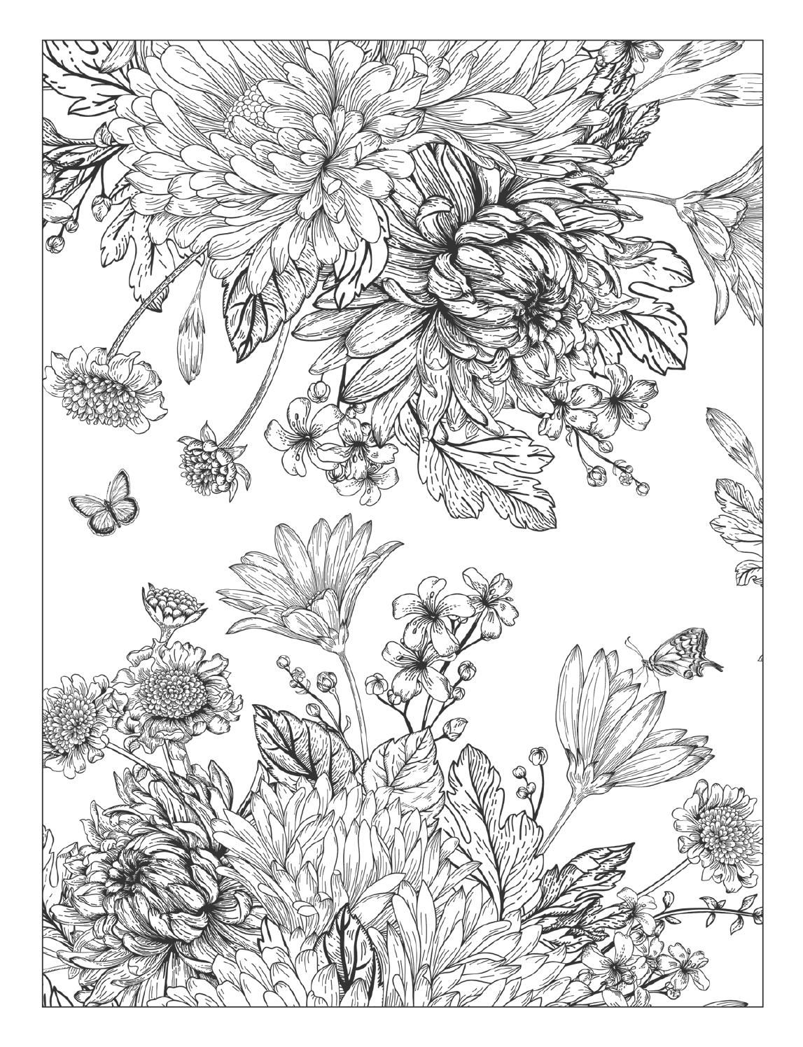 Beautiful flowers detailed floral designs coloring book preview by