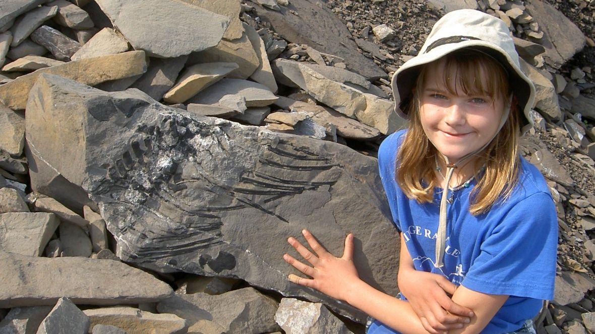 Amazing fossils found by ordinary people thrill scientists: Public has access to places paleontologists can't cover, boosting chance of rare finds (CBC News 24 May 2016)