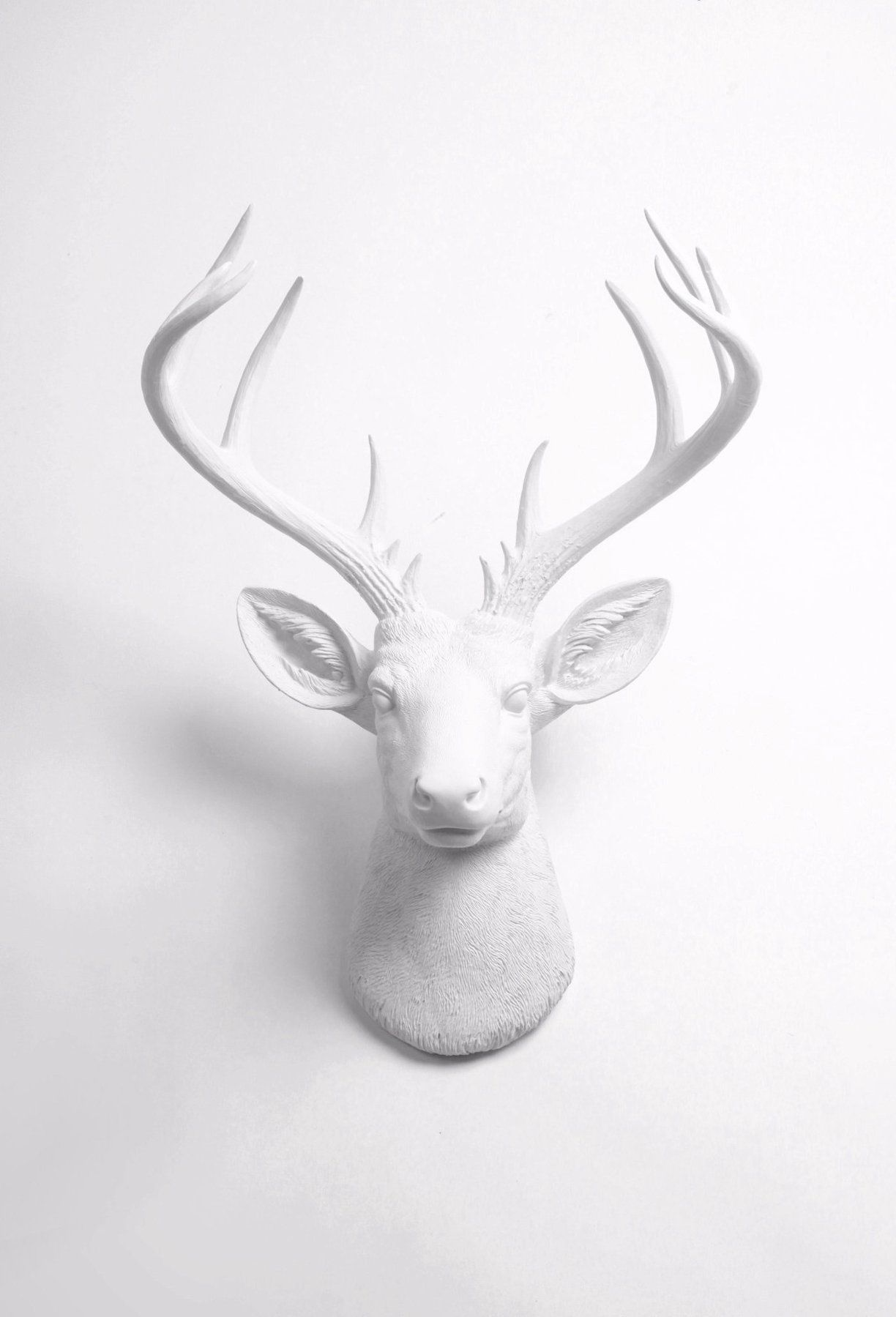 White Deer Antlers Wall Decor from i.pinimg.com