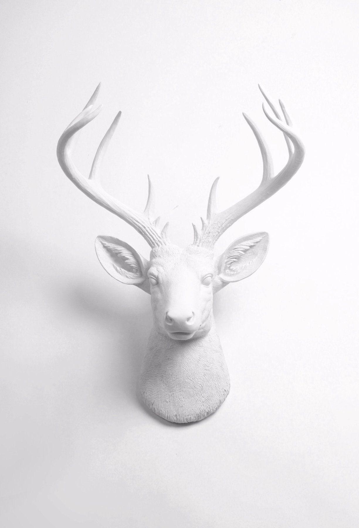 The Xl Templeton Modern White Deer Head Wall Decor White Deer