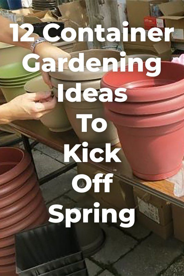 12 Container Gardening Ideas To Kick Off Spring is part of Diy garden, Diy garden decor, Container gardening, Garden, Garden projects, Creative gardening - Get excited for spring with these 12 container gardening ideas! diy garden gardening spring