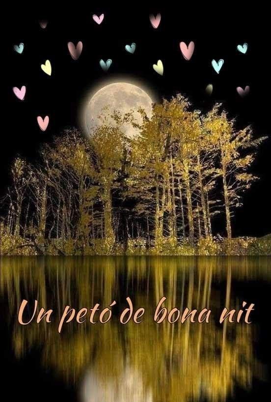 Pin De Montserrat Casas Bartomeu En Bona Nit Buenas Noches En Catalan Imágenes De Buenas Noches Frases De Noche