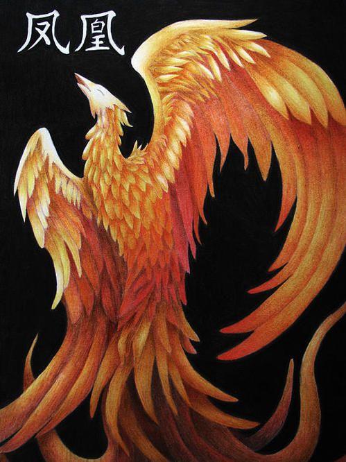 Zhu Que Poster By Lauren Cawthron Art Art Prints Vermilion Bird