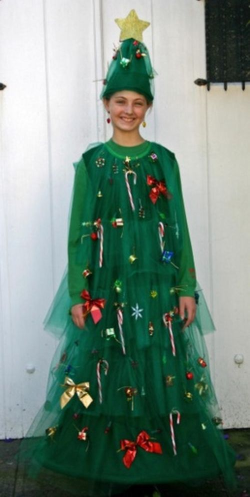Homemade Christmas Costumes Tree Costume
