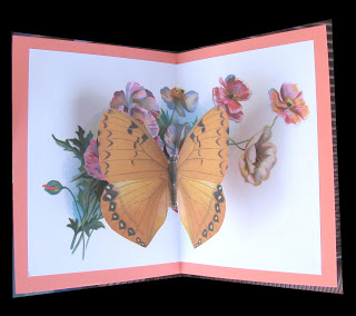 Photo of Easy Butterfly Pop Up Card
