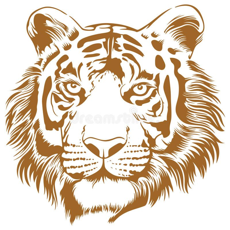 Tiger Stencil This Is An Attractive And Powerful Stencil Artwork