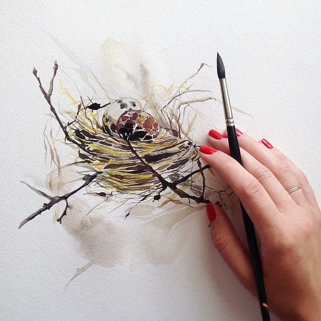 Birds Nest Watercolor Bird Bird Nest Painting Watercolor