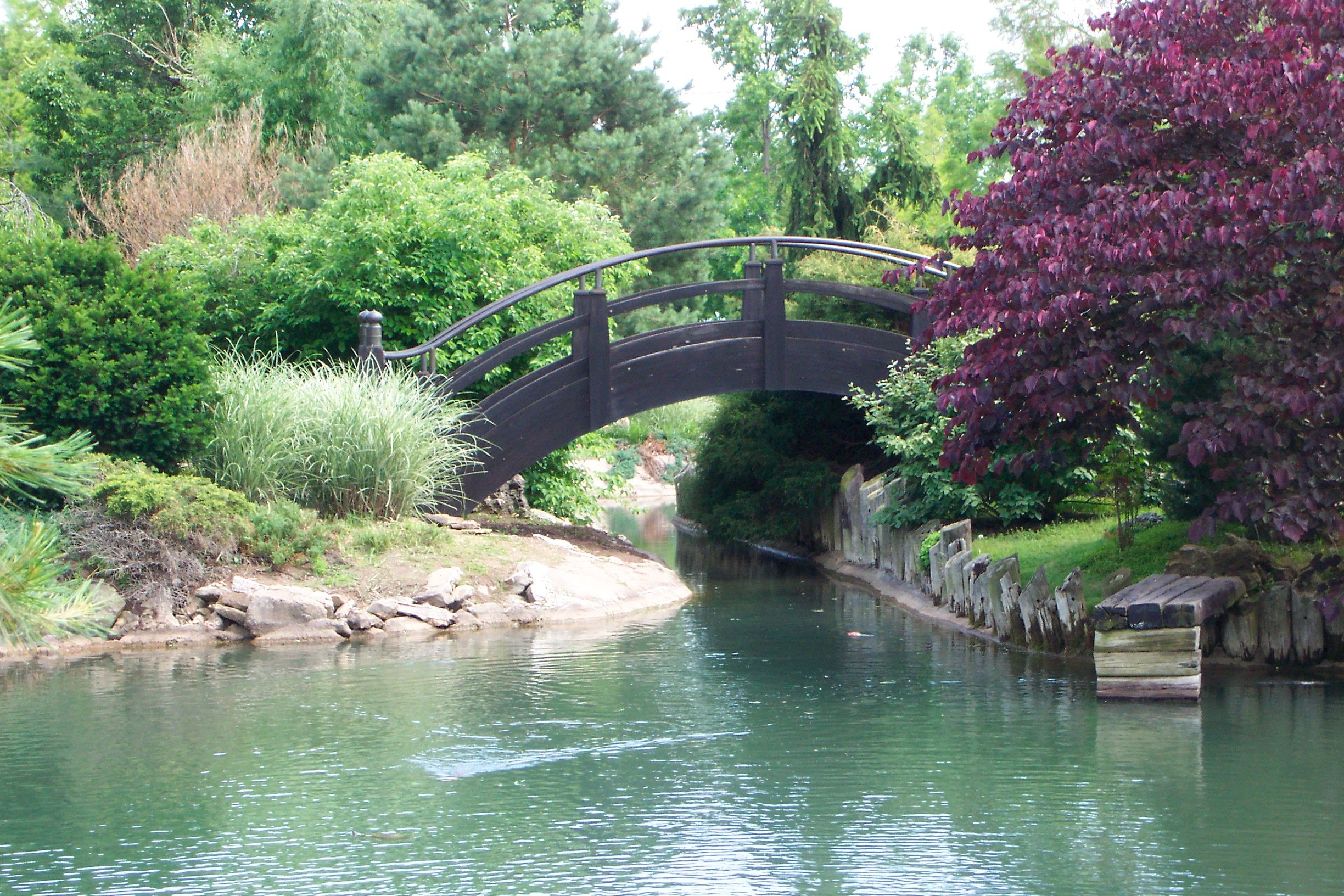 The Bridge Mizumoto Japanese Stroll Garden Springfield Mo Places I Have Been Pinterest