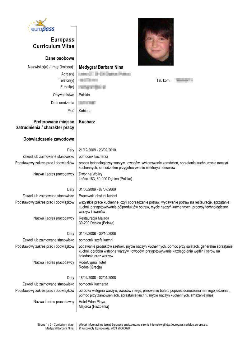 Modele Cv Europass Cv Template Curriculum Vitae Cv Design Template