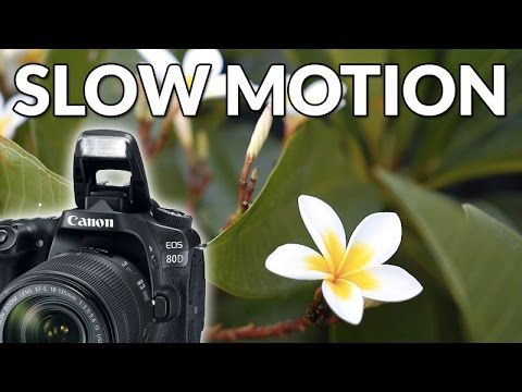 Canon 80D Slow Motion Video - 60fps 1080p Test | Photography Tips