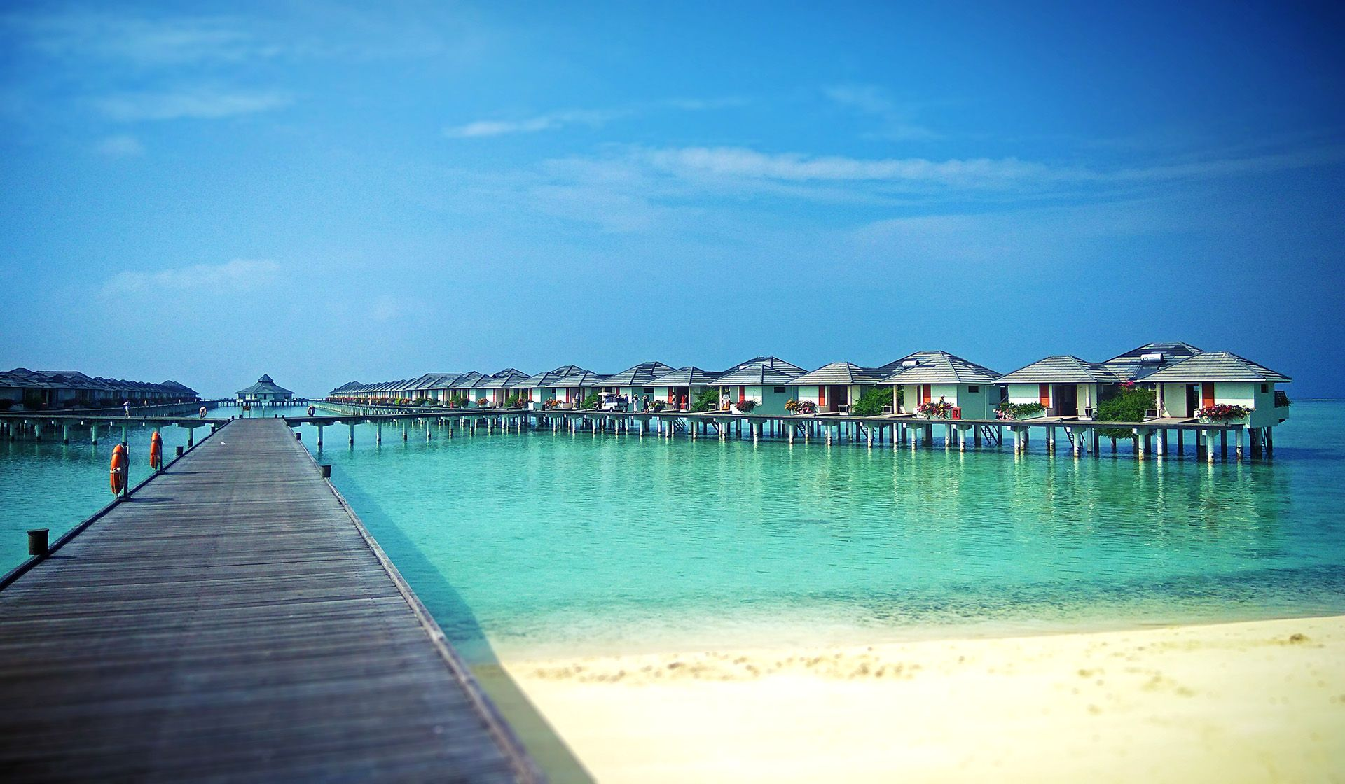 Water Bungalow Is The Most Popular Room Type In Sun Island