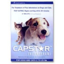Capstar Dogs Dog Cat Fleas