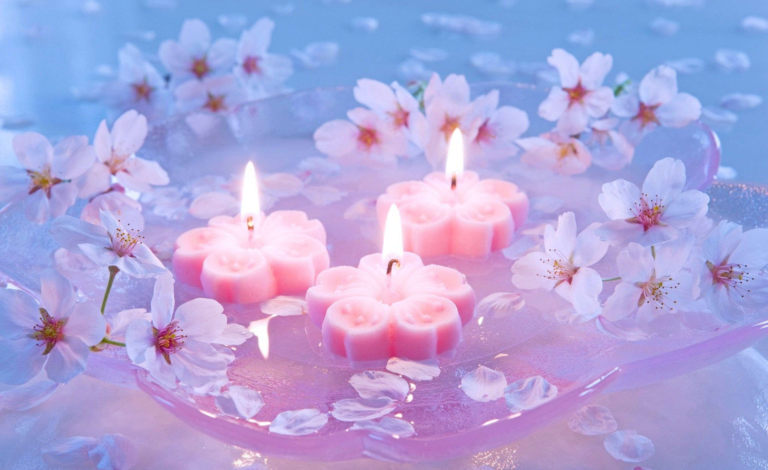 Candles And Cherry Flowers Wallpapers Download HD Desktop