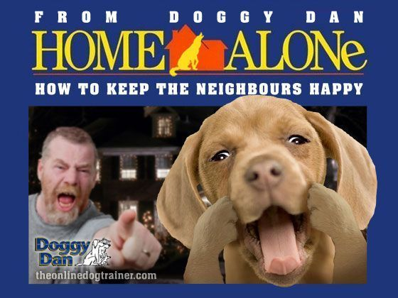 How To Stop Dog Barking When Left At Home Alone Dog Home Alone