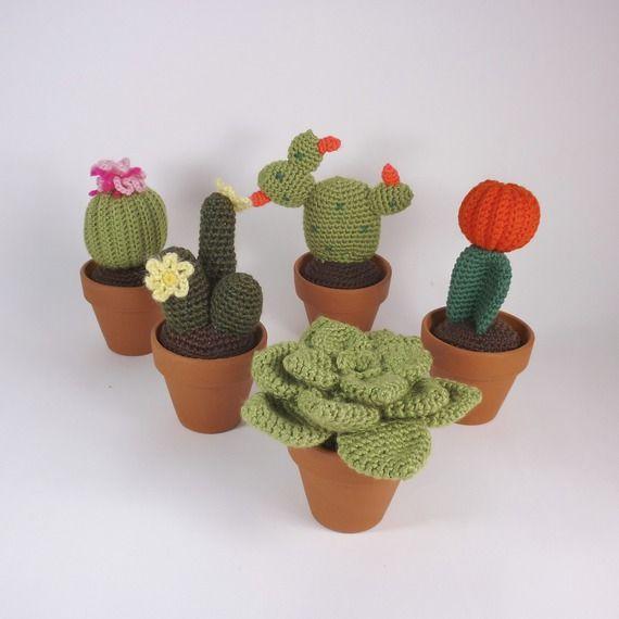 cactus et succulentes au crochet cadeau maitresse vendu. Black Bedroom Furniture Sets. Home Design Ideas