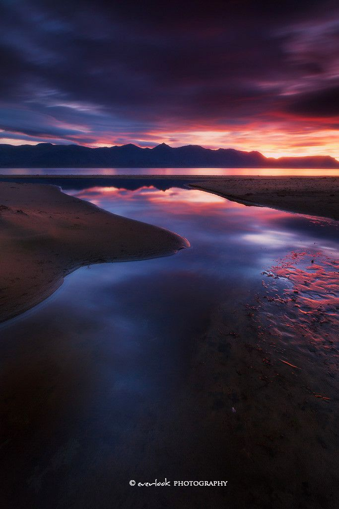 Dark Floes by Dylan Toh & Marianne Lim