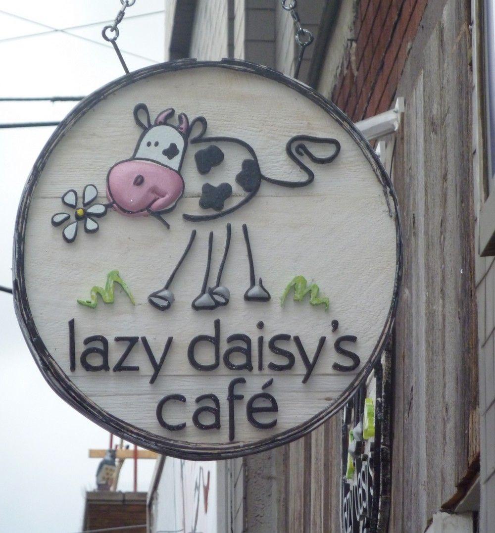 Daisy S Kitchen Toronto