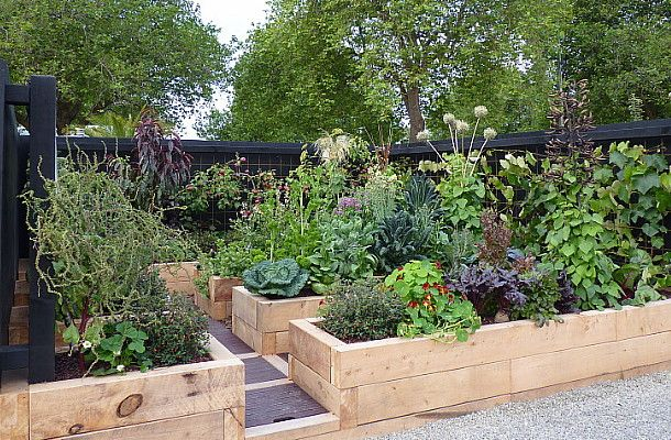 A contemporary sustainable vegetable garden ~ designed by ...