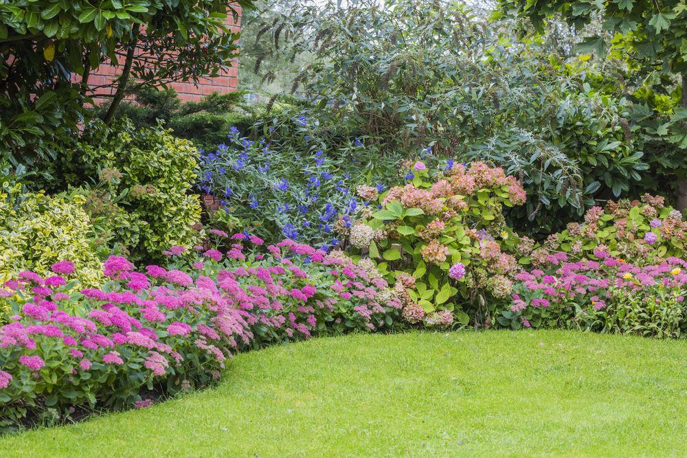 15+ Blumenbeet Anlegen Für Anfänger