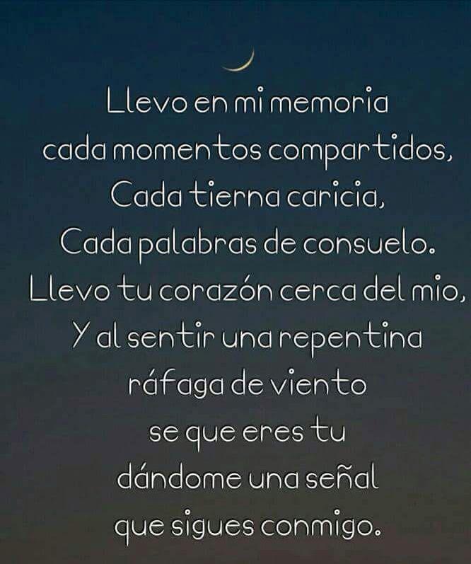 Llevo En Mi Memoria Cada Momentos Compartidos Recuerdos