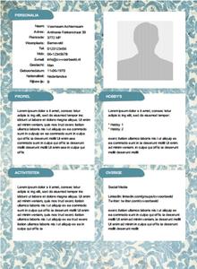 Gratis creatief CV sjabloon van http//cvvoorbeeld.nl