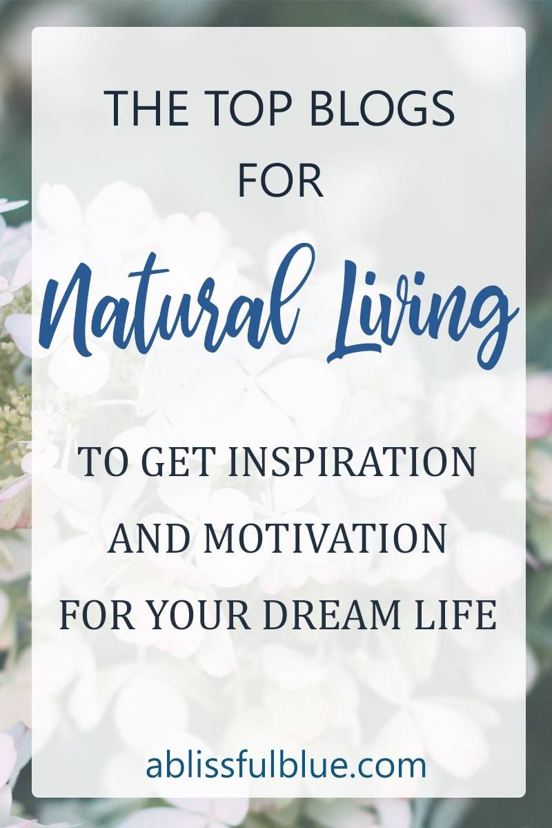 Top Natural Living Blogs You Should Check Out   Healthy