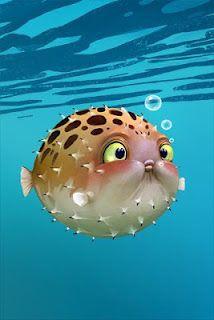 Hey Blowfish Blow Fish Illustration Cute Creatures Cartoon Fish