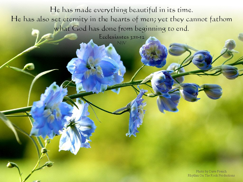 free christian pictures with verses christian desktop images