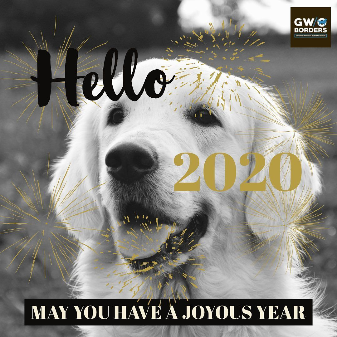 Happy New Year In 2020 Movie Posters Poster Borders