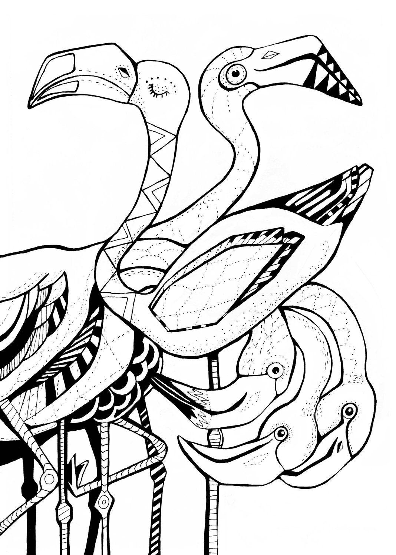 Flamingo Poster. Sofie Børsting Coloring books, Coloring