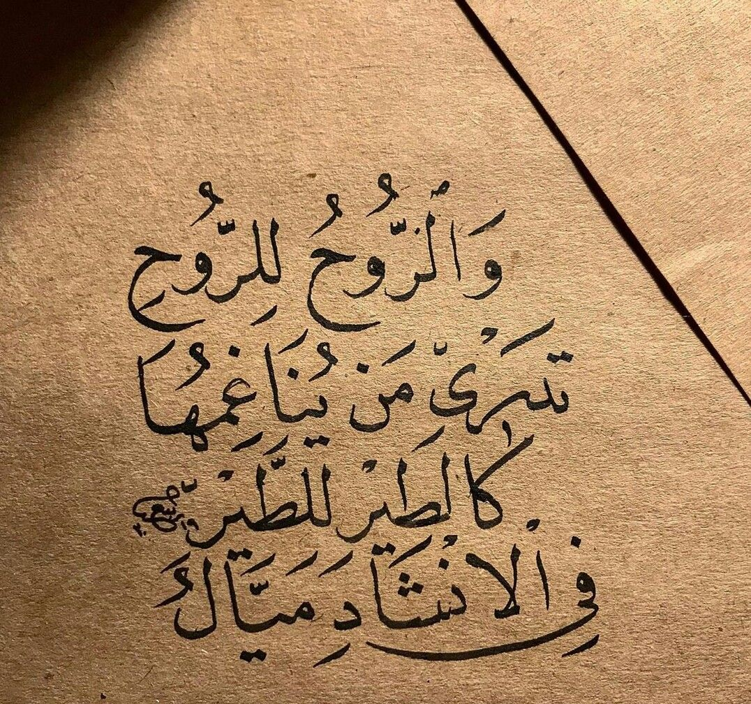 Pin By Wshrif Shrif On Qouts Words Quotes Wise Words Quotes Islamic Inspirational Quotes