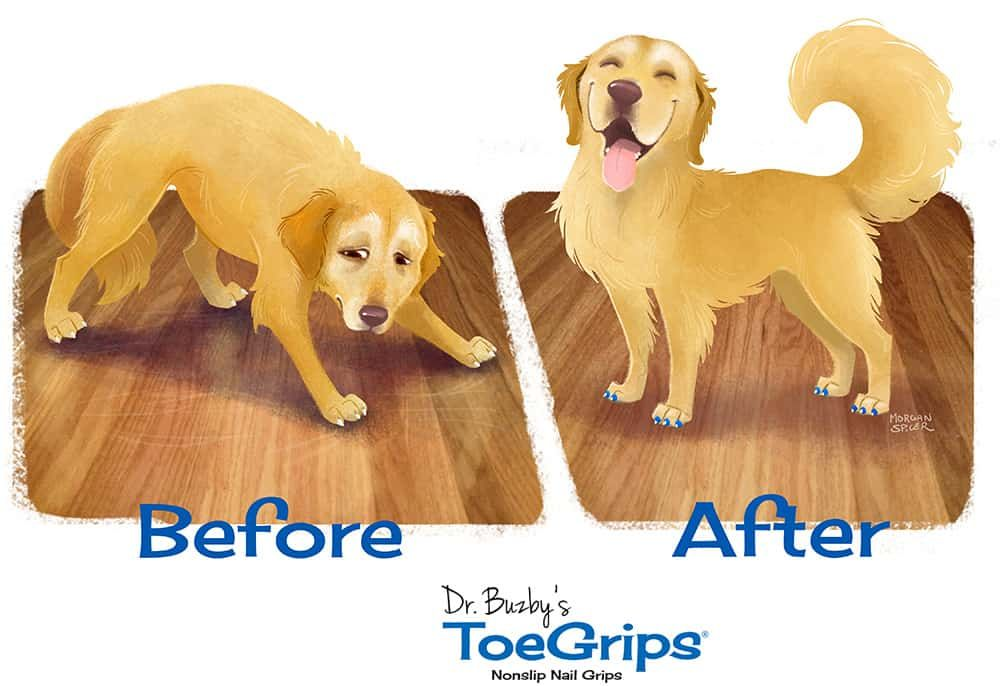 Best What Are Toegrips Your Dog Dog Stairs Dog Walking 400 x 300