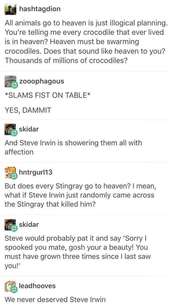 I Am 100 Certain Steve Irwin Would Do This To That Stingray He Was Such A Treasure Tumblr Funny Memes Funny