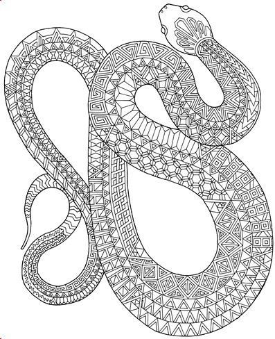 Zanimals Snake Coloring Page - Adult Coloring Book Pages - one page ...