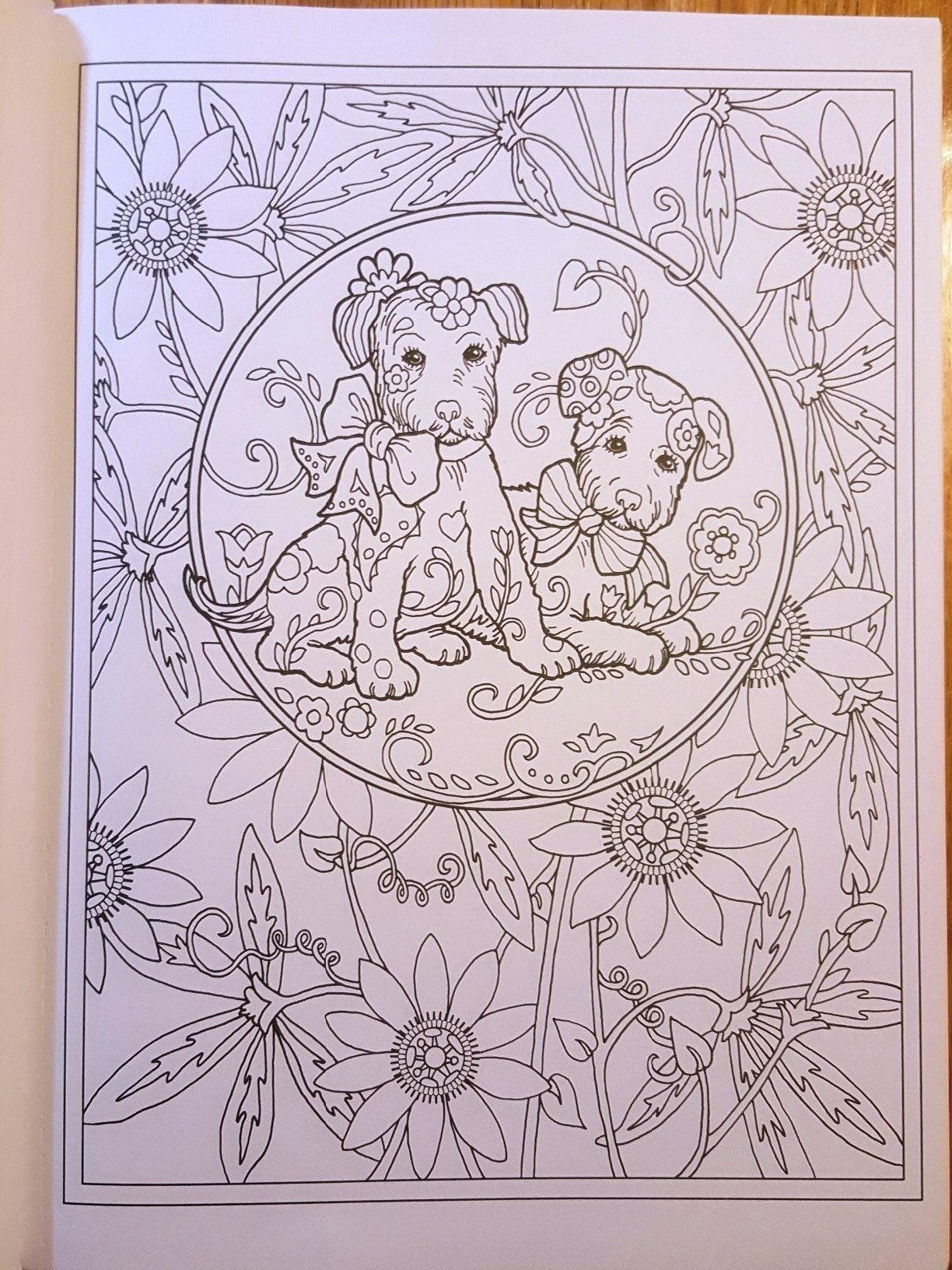 Amazon Creative Haven Dazzling Dogs Coloring Book Adult 0800759803828